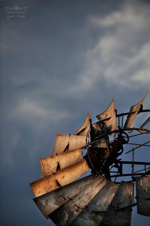 last light on the windmill