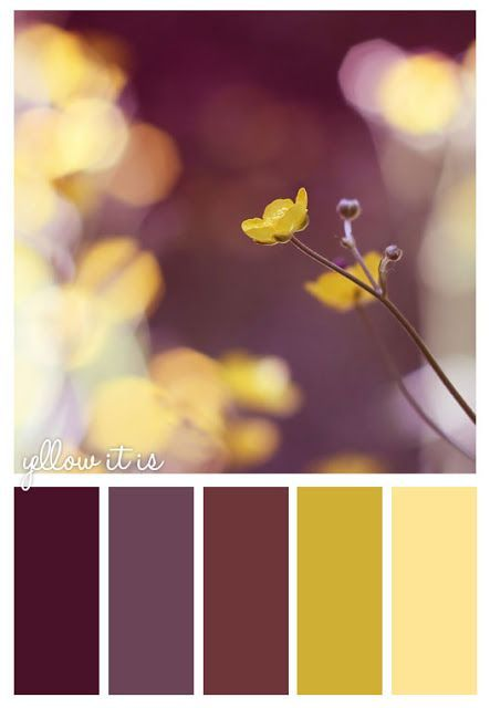 yellow it is