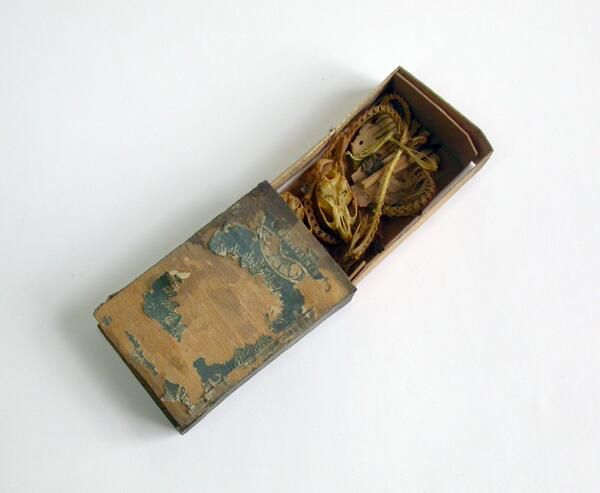 """Hyde Park Barracks (Sydney Living Museums). """" how's this for a 1860s mouse coffin from Sydney's Hyde Park Barracks Museum? """""""