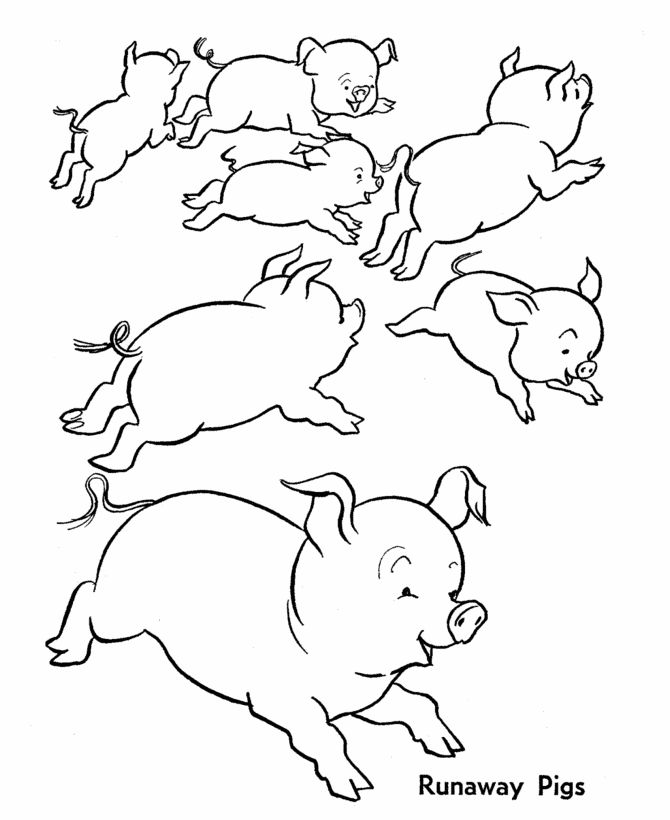 farm animal coloring page wild runaway pigs - Animal Pictures To Print And Colour