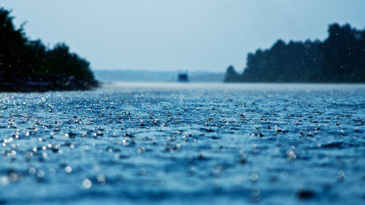 雨によってできた波紋が地面に見える