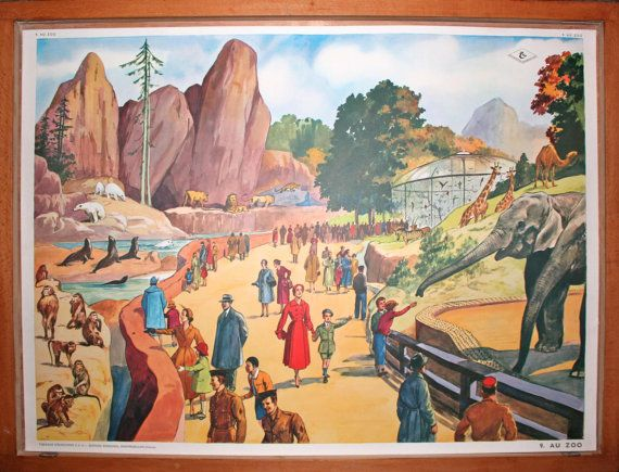 Le STADE  Le ZOO  Vintage  Affiche scolaire par LeRetroMarket