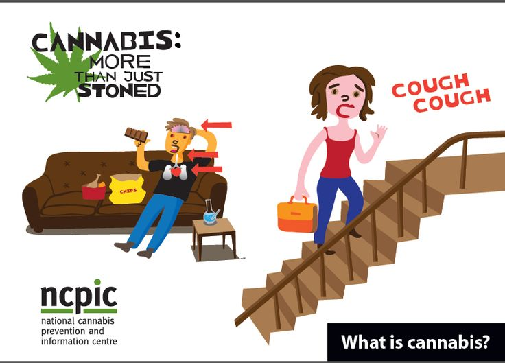 What is Cannabis?| NCPIC | Part of a suite of easy-to-read, illustrated resources that are designed for people with low literacy skills. This booklet explains what cannabis is and how it works.