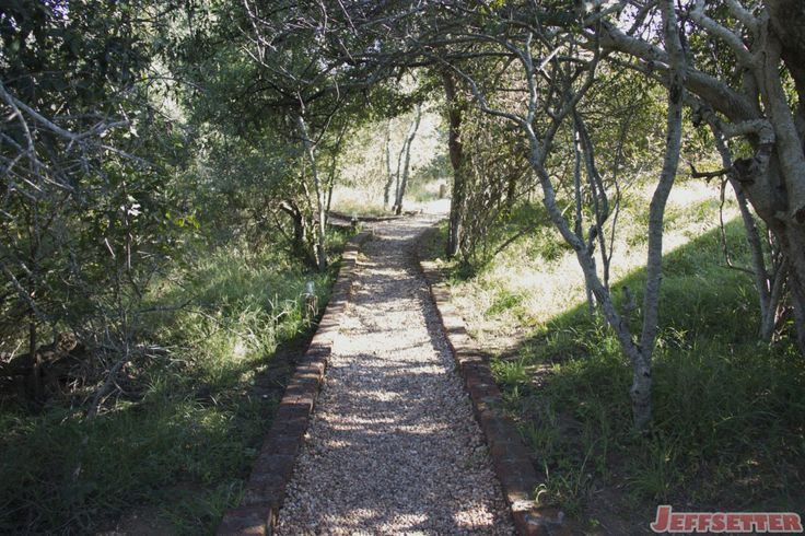 The paths to our room were a mixture of stone and composite decking. Here's a typical view of our way home to the honeymoon suite.