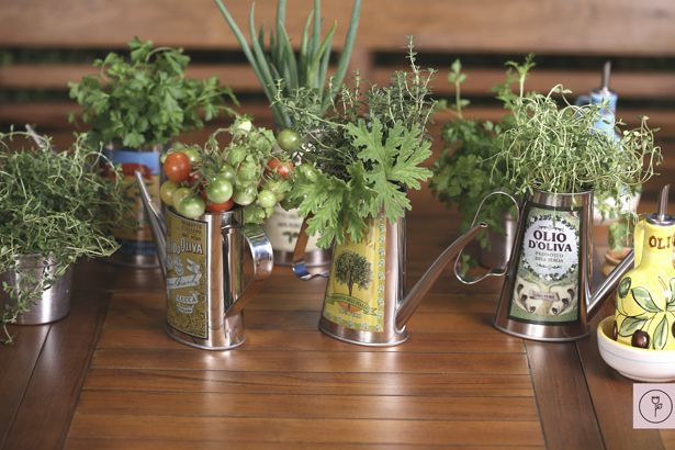 Basil Thyme, cherry tomatoes, mint & chives arranged in these pretty Olive Oil pitcher tins makes this beautiful yet simple centerpiece!