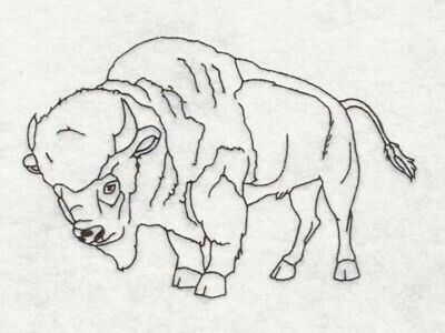 89 best Buffalo and Bison sketches images on Pinterest