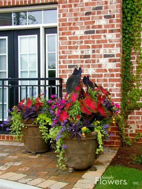 Simply Flowers, Inc.....love the caladiums mixed w...