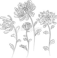 chrysanthemum tattoo black and white - Google Search