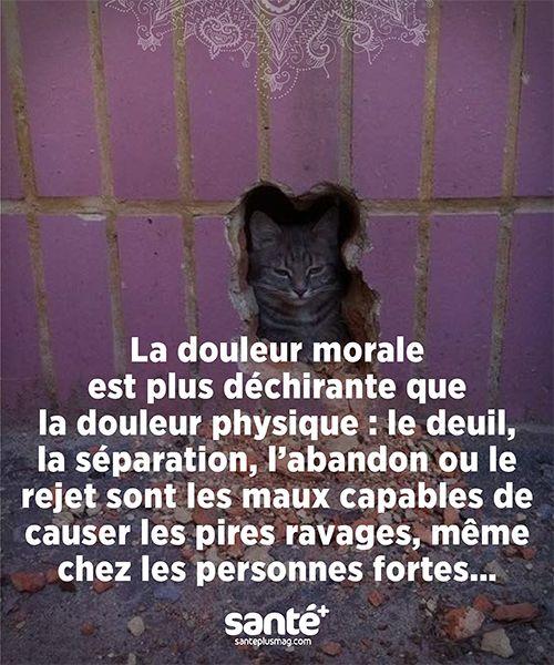 """""""La douleur morale est plus déchirante que la douleur physique : le deuil, la séparation, l'abandon ou le rejet sont les maux capables de causer les pires ravages, même chez les personnes fortes..."""""""