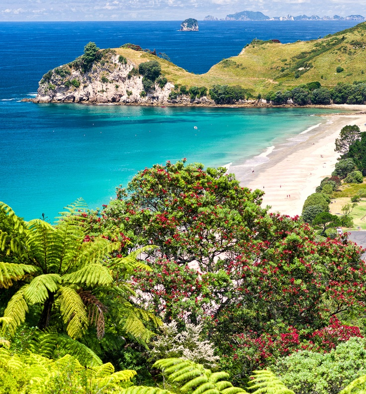 Beautiful Hahei Beach, Coromandel Peninsula, New Zealand.