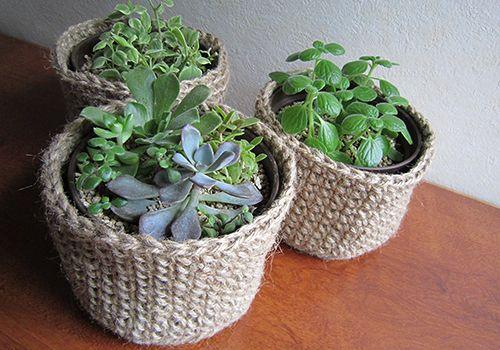 sorahachi view: 多肉植物と植木鉢カバー