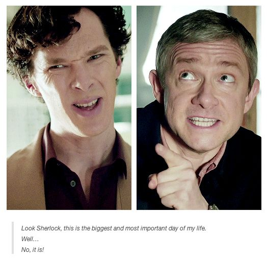 Their faces are my favourite thing.