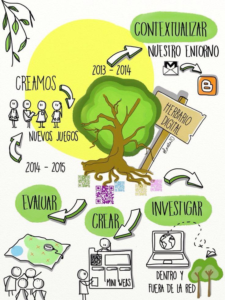 Herbario digital - proyecto trimestral de 3º ciclo de Primaria  http://herbariodigitalprima.wix.com/herbariodigital