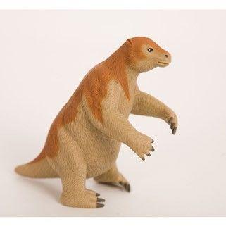 megatherium giant ground sloth
