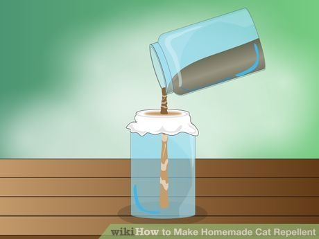 Image titled Make Homemade Cat Repellent Step 3