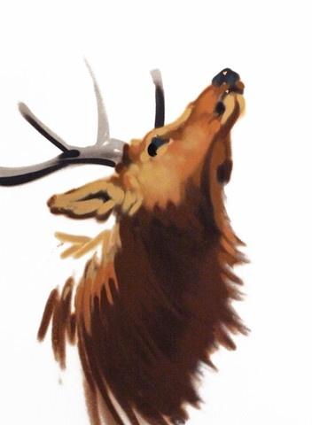Elk Painting - so beautiful