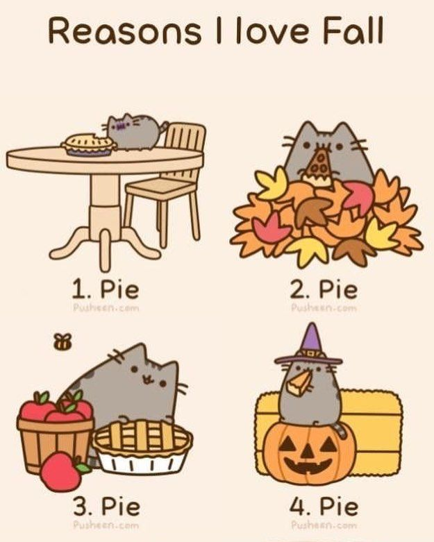Reasons we love fall! Pie, Pie, Pie! (link in bio) #coolpencilcase #pusheen #gift #stationerylover #stationery #stationerylove #stationerydesign #stationeryshop #stationerysupplies #stationeryjunkie #stationeryfinds #erasercollector #erasercollections #plannergirl #planner #planneraddict #plannerlover #stationeryaddict #plannergoodies #plannercommunity #plannerjunkie #plannerlove #purposefulplanner #backtoschool #backtoschoolwithheart