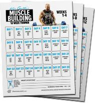 kris gethin's 12week musclebuilding trainer