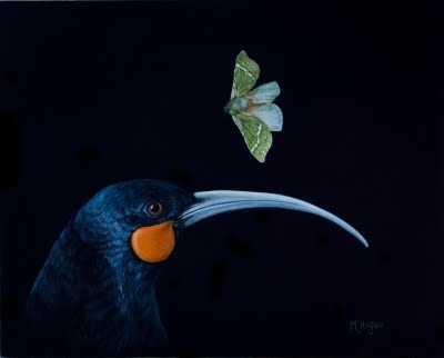 Huia and Ghost Moth by Mandy Hague. Whakatane, NZ.