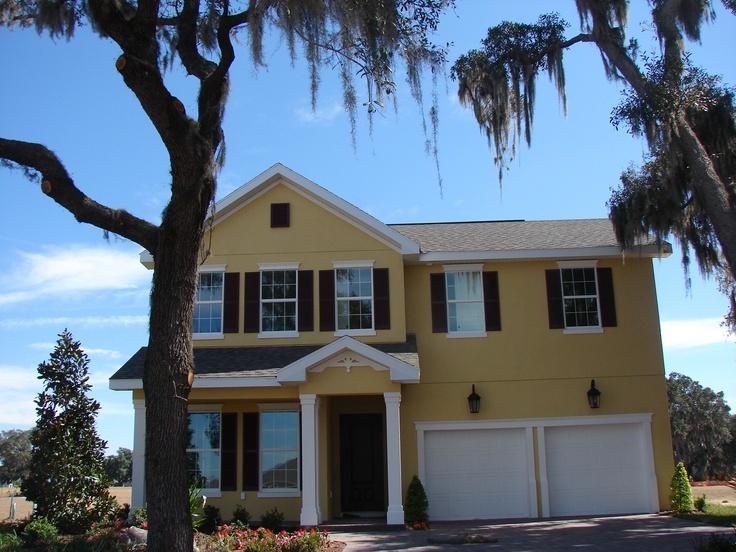 Starling @Fishhawk Ranch Brand New Taralon Single Family Homes Lithia Florida 33547