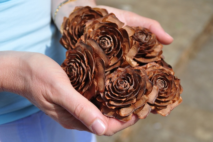 Pine cone flowers craft ideas pinterest pine cone for Small pine cone crafts