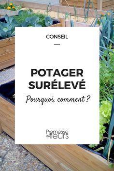 Il est loin le temps où le potager se résumait à une large parcelle de terre labourée, traversée de planches en guise de passe-pieds. Désormais, les légumes prennent de la hauteur...