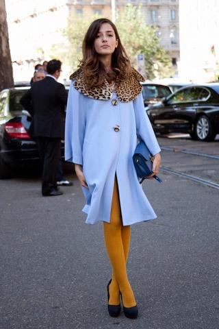 Baby blue coat w/ leopard collar