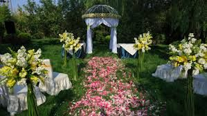 Výsledek obrázku pro svatba v lese v přírodě