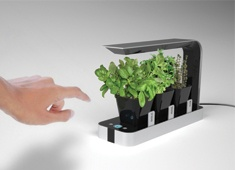 The sleek BB Little Garden was designed with urban dwellers in mind and makes it possible to have fresh herbs all year round. Aesthetically and functionally, it's more like a modern appliance and will blend perfectly in any kitchen.