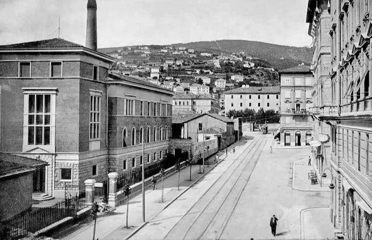 Trieste-Italy Stab. Stock roiano