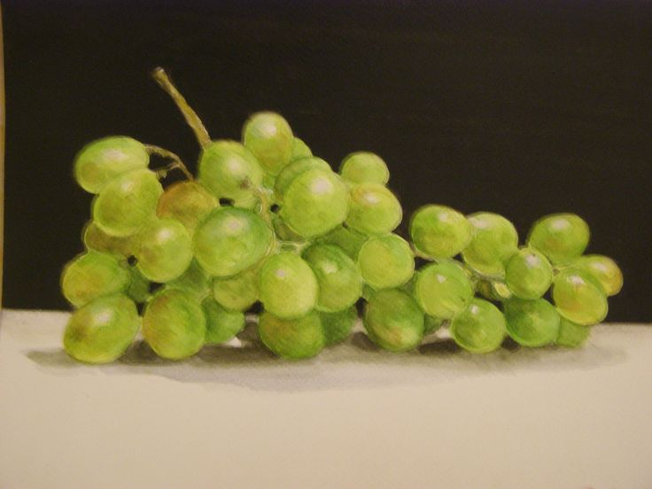 White grapes - watercolour