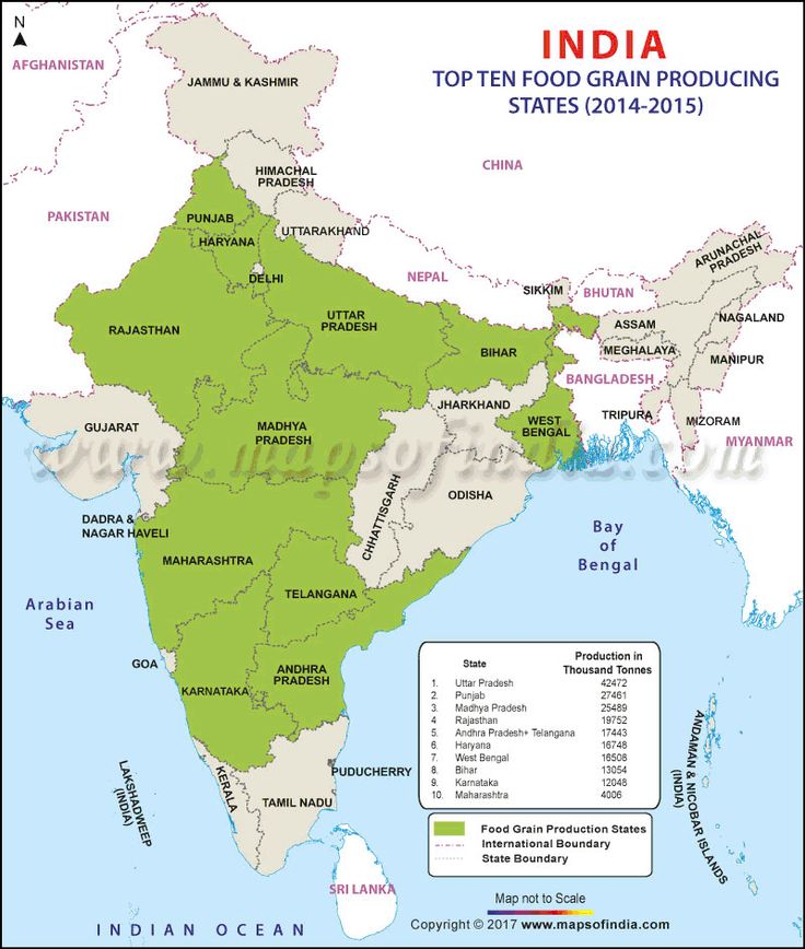 The 25 best map of india ideas on pinterest india map indian india foodgrain map gumiabroncs Image collections