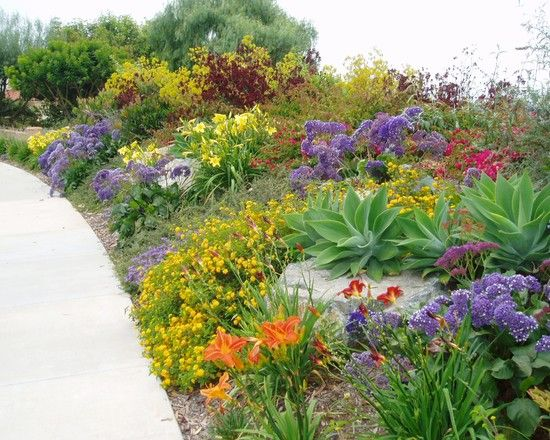 104 best Slope Plantings images on Pinterest Backyard ideas