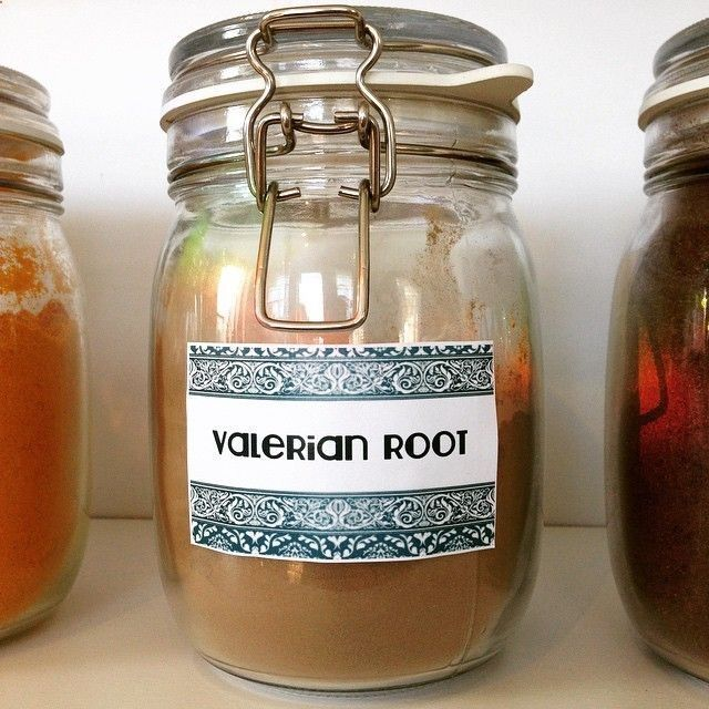 Valerian root is a herb used to treat insomnia and sleep disorders. It is also an effective treatment for anxiety, as it reduces the dangerous effects of stress. #valerian #medicine #herbs #herbalmedicine #wellness #acupuncture #bestsleepofyourlife #massage #organic #tea #healthy #practice #teahausjax #ilovejax #AcupunctureforAnxiety #acupunctureforstress
