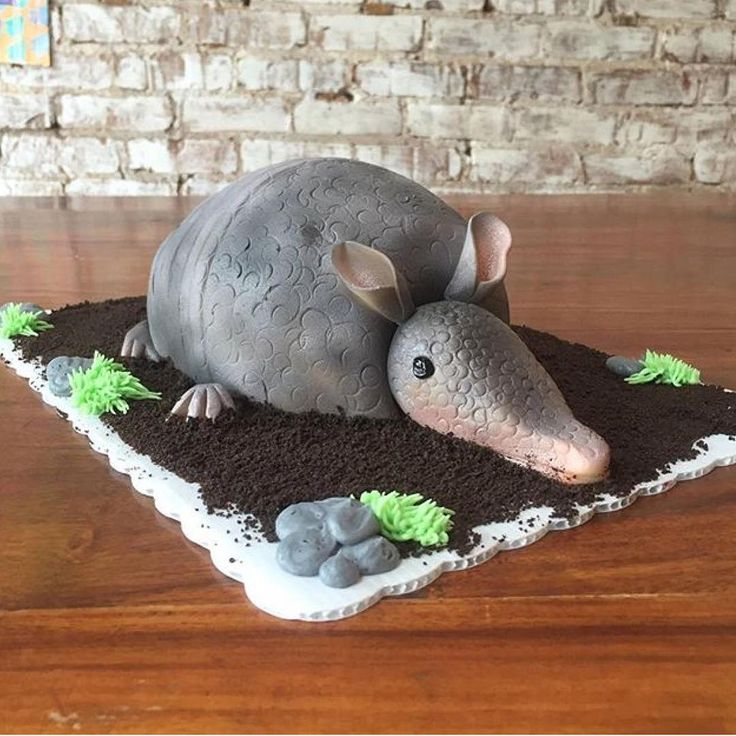 Baby armadillo cake  Repost from @honeymoonbakery  #cakeart #armadillo #steelmagnolias #honeymoonbakery
