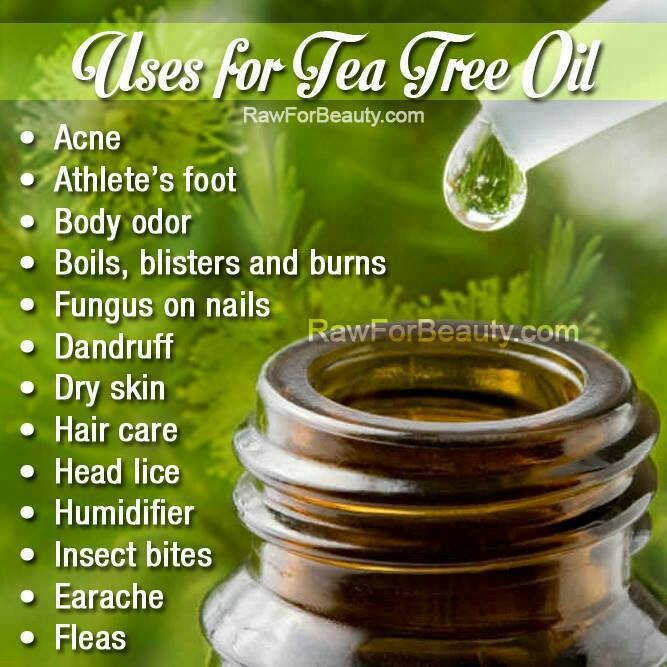 The beautiful benefits of tea tree oil!