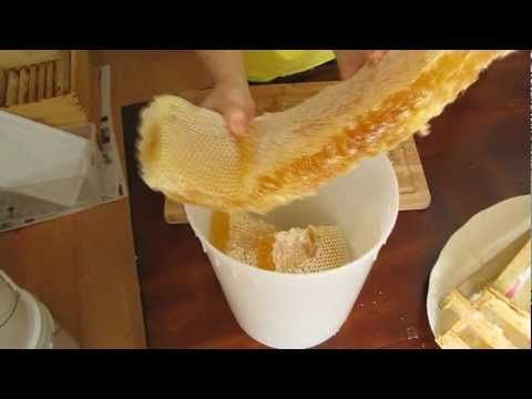 Although not from a top-bar hive, this video really shows what whole comb looks like and feels like. So much better than foundation-bound!