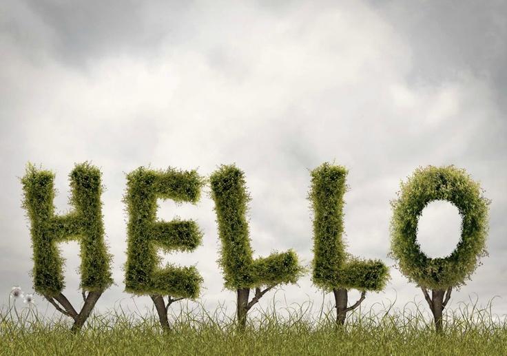 Flora & Fauna | Matt Walford: Digital Collage, Design Typography, Фотограф Matte, Types Design, Matte Walford Repin, Things, Walford Английский, Hello Kitty, Вэлфорд Matte
