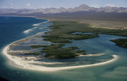 Tiburon Island.  Mariposa News - A Sierra Sun Times Special Edition Seri Indians by Margot Wholey
