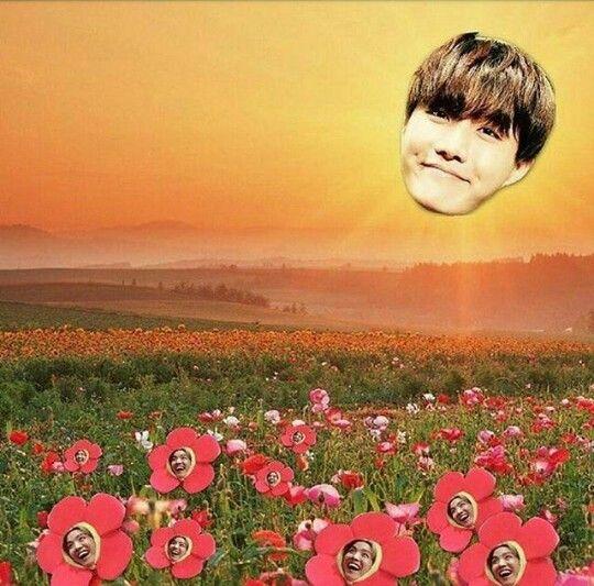 J-hope photoshop | Kpop memes | Pinterest | Photoshop, BTS