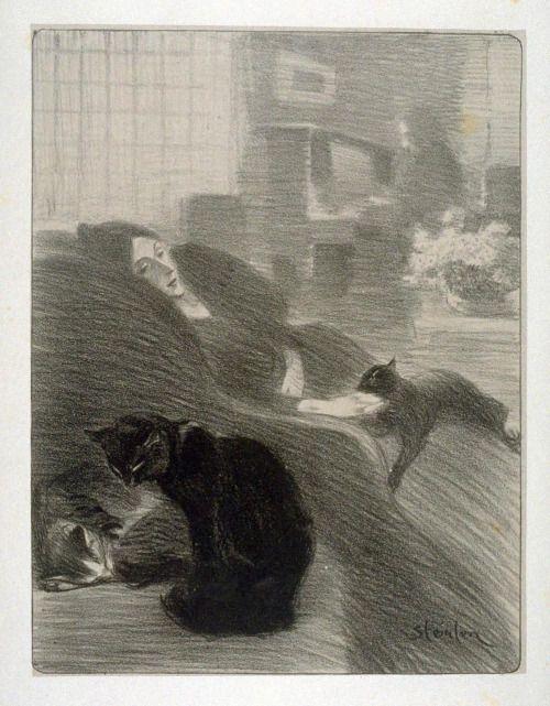 The Black Cat Steinlein