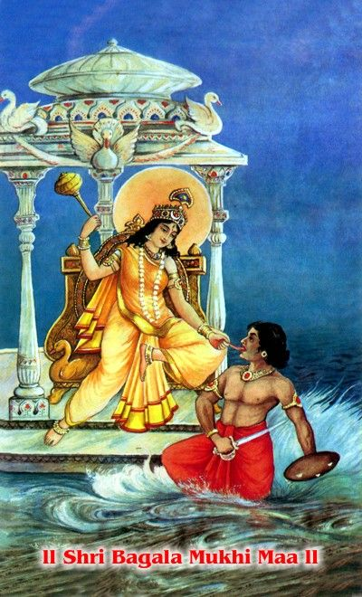bagalamukhi a mahavidya goddess, a tantric form of kali who bestows the power to dominate foes, have mastery in all situations and power over obstacles.
