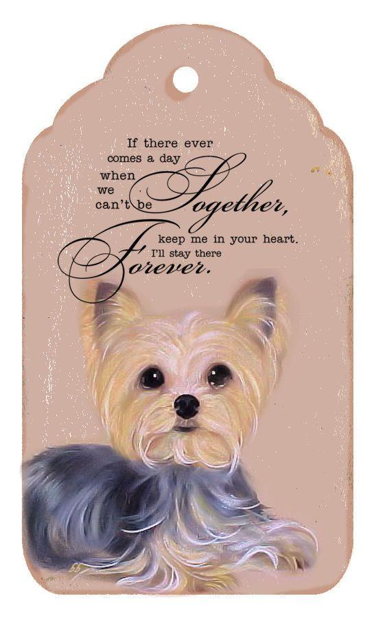 Honden quotes