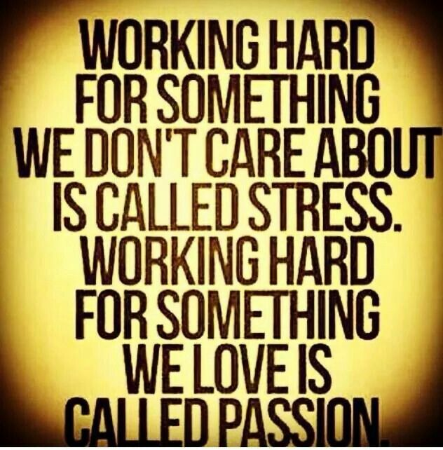 STRESS vs. PASSION ~