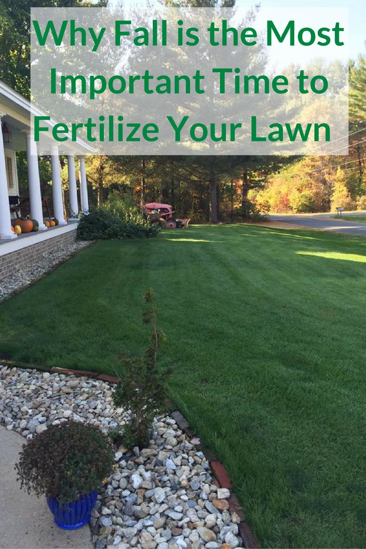If you only fertilize your lawn once a year, fall is the best and most important time. Northern grasses, fertilize as late in the season as possible before the 1st deep freeze or snow fall.