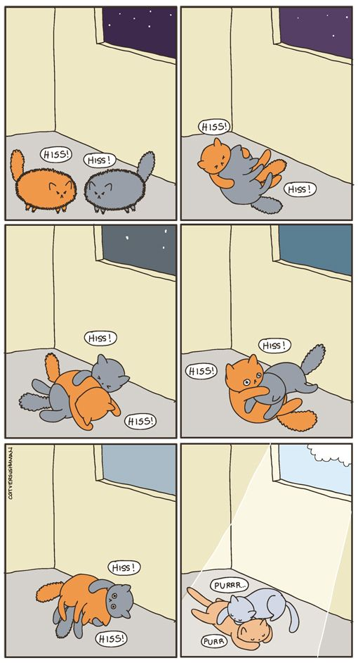 if you ignore one of the orange cats legs, this is my house.... minus the last panel. They still kinda hate each other.
