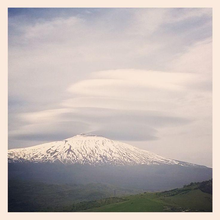 pr'estate, Etna, Sicily, 2015.