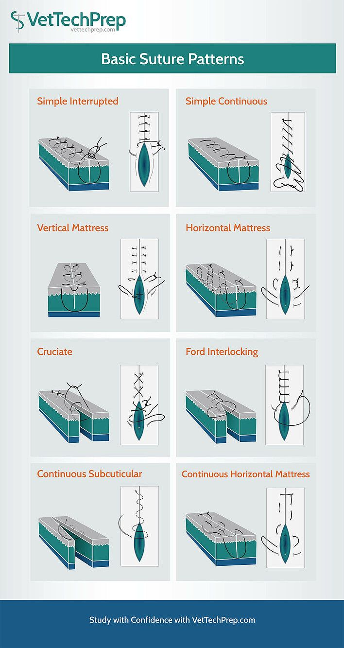 VTP_info_suture.jpg Vet medicine, Vet tech school, Vet