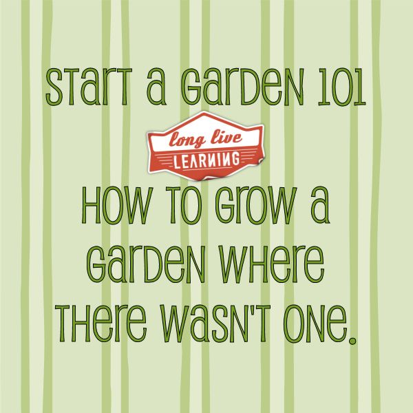 Start A Garden 101 | Long Live Learning Liz here may ideas for your garden