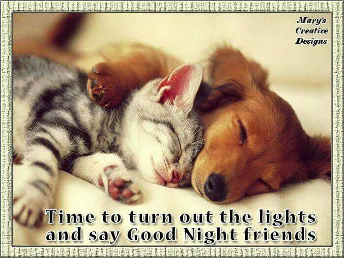 https://i.pinimg.com/736x/44/f8/92/44f89203555fe62a04a77117b6589258--sweet-dreams-inspirational.jpg